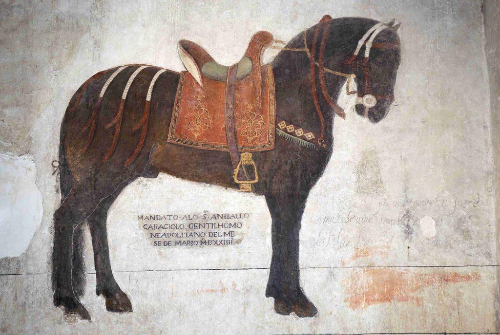 Polo museale del Molise - Cavallo Pandone